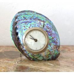 ceas scoica paua